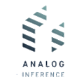 Analog Inference