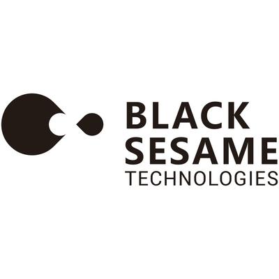 Black Sesame Technologies Inc