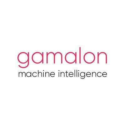 Gamalon Inc