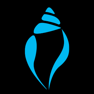 BlueConch Technologies